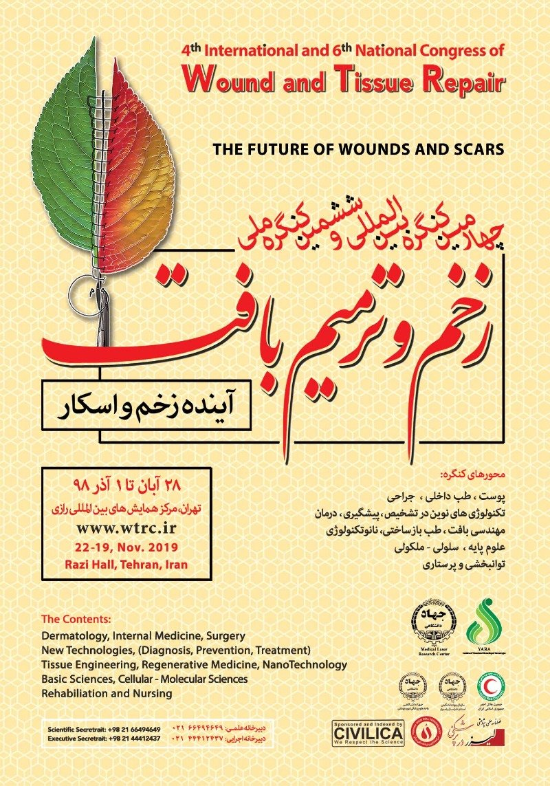 4th international and 6th national congress of wound an